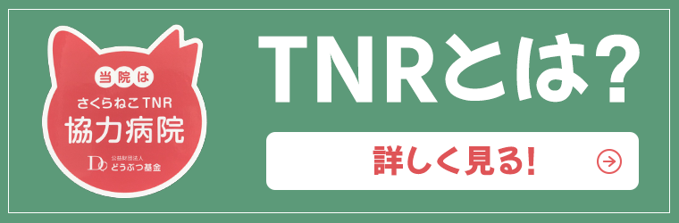TNRとは?